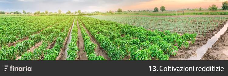 attività redditizie agricoltura
