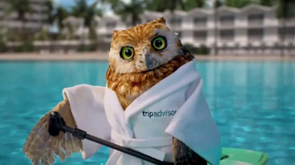 Tripadvisor promo