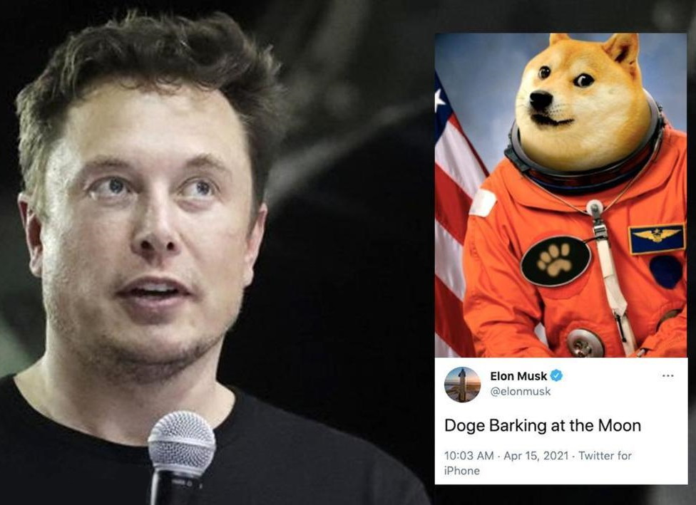 previsioni dogecoin musk