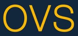 OVS società