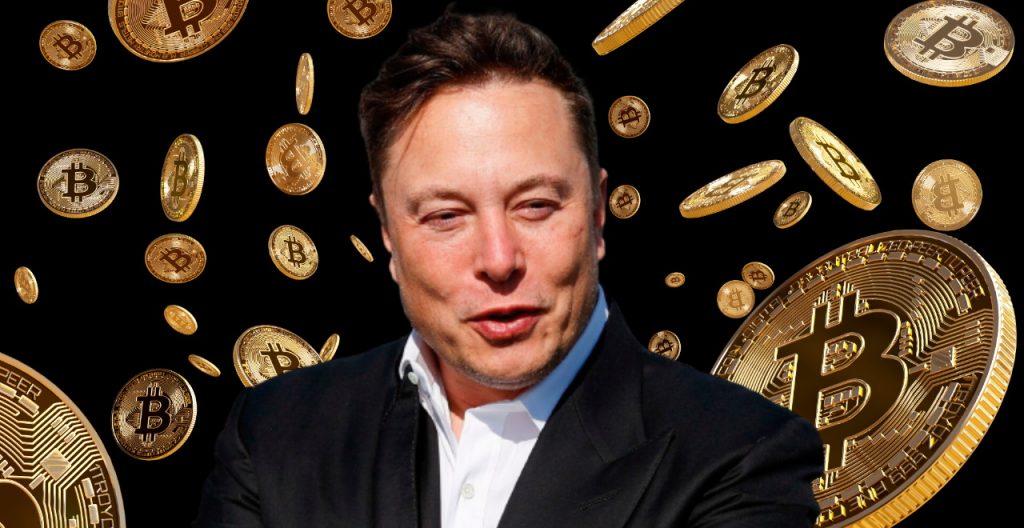 elon musk trading bitcoin